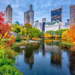 Jigsaw puzzle: Autumn in Central Park