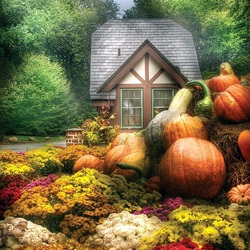 Jigsaw puzzle: Time for pumpkins