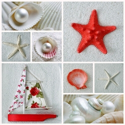Jigsaw puzzle: Starfish and seashells