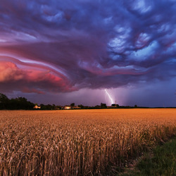 Jigsaw puzzle: Thunderstorm in the field
