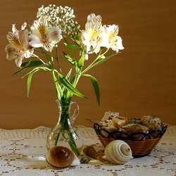 Jigsaw puzzle: Flowers and shells