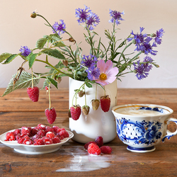 Jigsaw puzzle: Raspberry with cream
