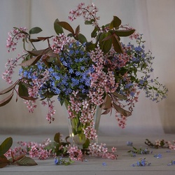 Jigsaw puzzle: Forget-me-nots and bird cherry Colorato