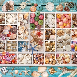 Jigsaw puzzle: Sea treasures