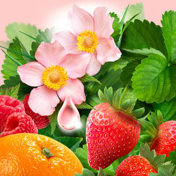Jigsaw puzzle: Floral and berry still life
