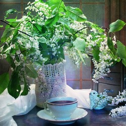 Jigsaw puzzle: Bird cherry bouquet