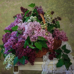 Jigsaw puzzle: Basket with lilacs
