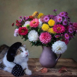 Jigsaw puzzle: Cat and a bouquet of flowers