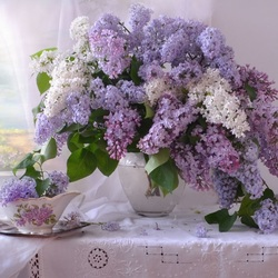 Jigsaw puzzle: Lilac on the table