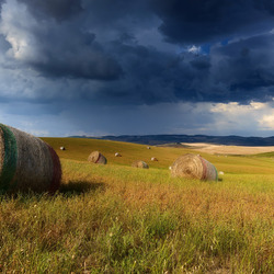 Jigsaw puzzle: Field with hay