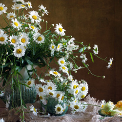 Jigsaw puzzle: Daisies on the table