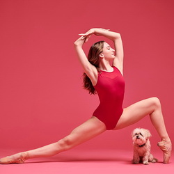Jigsaw puzzle: Dancers and dogs