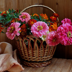 Jigsaw puzzle: Autumn flowers