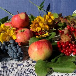 Jigsaw puzzle: Autumn harvest