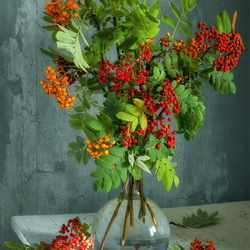 Jigsaw puzzle: Still life with rowan