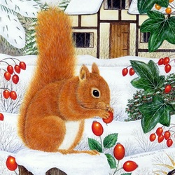 Jigsaw puzzle: Red squirrel