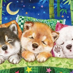 Jigsaw puzzle: Puppies