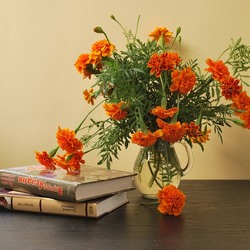 Jigsaw puzzle: Marigolds and books