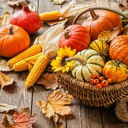 Jigsaw puzzle: Autumn gifts