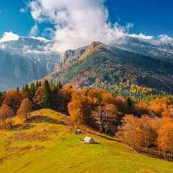 Jigsaw puzzle: Autumn Carpathians