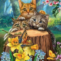 Jigsaw puzzle: Three kittens