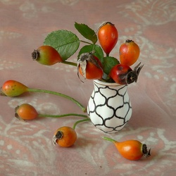 Jigsaw puzzle: Rosehip berries