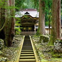 Jigsaw puzzle: Pagoda in the forest of Japan
