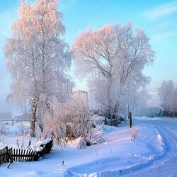 Jigsaw puzzle: Bright winter morning