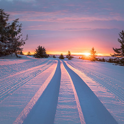 Jigsaw puzzle: Winter sunset