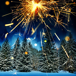 Jigsaw puzzle: New year forest