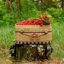 Jigsaw puzzle: Strawberry basket