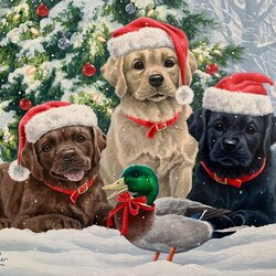Jigsaw puzzle: Christmas dogs and duck