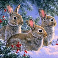 Jigsaw puzzle: Hare in the forest