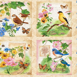 Jigsaw puzzle: Birds and butterflies