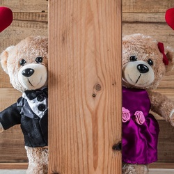 Jigsaw puzzle: A couple of bears in love