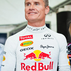 Jigsaw puzzle: David Coulthard