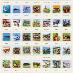 Jigsaw puzzle: Studying animals