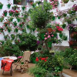 Jigsaw puzzle: Flower courtyards of Spain