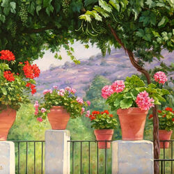 Jigsaw puzzle: Geranium on the terrace