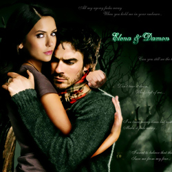 Jigsaw puzzle: Damon and Elena
