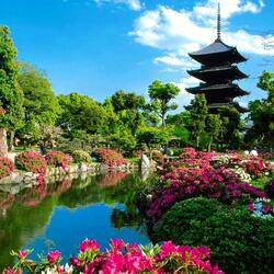 Jigsaw puzzle: Pagoda by the lake