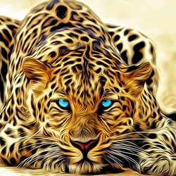 Jigsaw puzzle: Blue eyed leopard