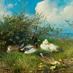 Jigsaw puzzle: Ducks with ducklings