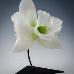 Jigsaw puzzle: Giant white glass orchid