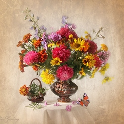 Jigsaw puzzle: Freshness of flowers