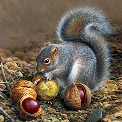 Jigsaw puzzle: Squirrel and chestnuts