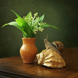 Jigsaw puzzle: Lilies of the valley and snail