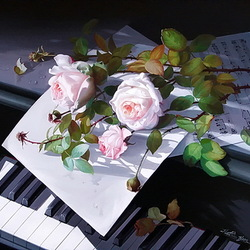Jigsaw puzzle: Roses and music