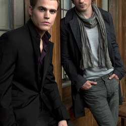 Jigsaw puzzle: Damon and Stefan