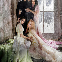 Jigsaw puzzle: Damon and the harem